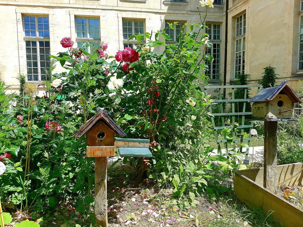 Potager du Jardin des Rosiers-Joseph-Migneret